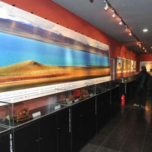 """大众影廊成功举办""""可可西里""""生态影像摄影展"""