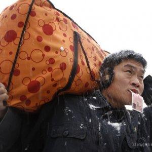 """""""回家""""摄影比赛获奖各奖项名单全揭晓"""